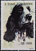 SAO TOME AND PRINCIPE - CIRCA 1995: A stamp printed in Sao Tome shows a dog