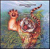 TANZANIA - CIRCA 1994: A stamp printed in Tanzania shows Panthera Tigris circa 1994