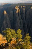 Black Canyon Of a Gunnison