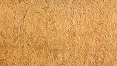 Flax Fiber Texture