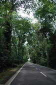 Quite Rural Road