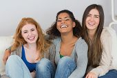 Portrait of cheerful young female friends sitting on sofa at home