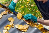 stock photo of clog  - Man cleaning the gutter from autumn leaves - JPG