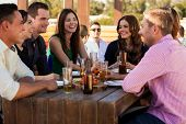 stock photo of friendship day  - Large group of friends having fun and drinking beer at a restaurant - JPG