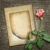 Card For Invitation Or Congratulation With Pink Rose