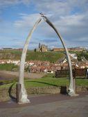 Whitby Through The Whalebones