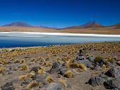 Altiplano lagoon