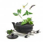 Teapot with various herbs isolated on white