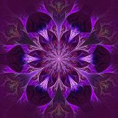 Beautiful Fractal Flower In Purple And Claret. Computer Generated Graphics.