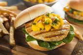 foto of mahi  - Mahi Fish Sandwich with Salsa and Lettuce