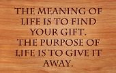 The meaning of life is to find your gift. The purpose of life is to give it away - quote by unknown