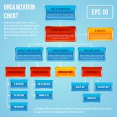 Organisational chart infographic