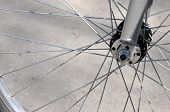 Bicycle Wheel And Spokes