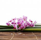 Branch orchid with white salt and leaves on bamboo mat