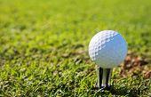 Golfer #46