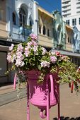 Potted Flowers Situated on City Street