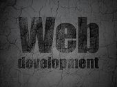 Web design concept: Web Development on grunge wall background