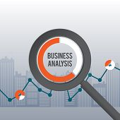 Business Analysis Concept