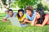 Group of college students using laptop together while lying on grass