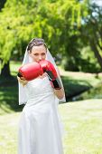 Portrait of beautiful young bride with boxing gloves punching in park