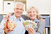Happy senior couple with fan of Euro money and a piggy bank