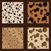Leopard Spots Pattern-wild - Illustration .