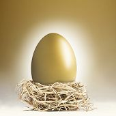 Giant Golden Nest Egg