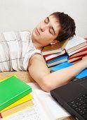 Tired Student Sleeping