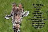 Giraffe quote