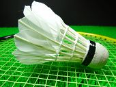 Shuttlecock On A Badminton Racket