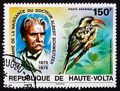 Postage Stamp Burkina Faso 1975 Albert Schweitzer And Toucan