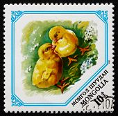 Postage Stamp Mongolia 1982 Chicks, Baby Animals
