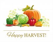 Harvest time vegetable composition on white. Vector eps 10.