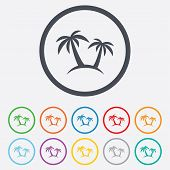 Palm Tree sign icon. Travel trip symbol.