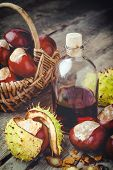 chestnuts in basket and bottle with tincture