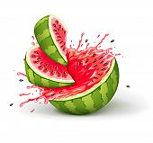 juicy ripe watermelon cuts with splashes of juice drops. Rasterized illustration.