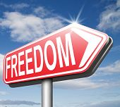 freedom no restrictions road sign peaceful free life without or obligations and peace democracy with text and word concept