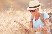 Tourist girl exploring map, active beautiful female searching right direction on the map, sitting in dry wheat field, autumn travel concept