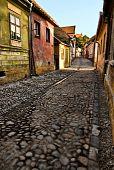 Medieval cobblestone paving poster