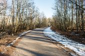foto of icy road  - icy winter road with sun rays and trees - JPG