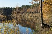 Scenic Autumn Colored River In Country