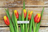 Feliz cumpleanos (which means happy birthday in Spanish) card with red tulips on rustic wood