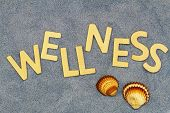 Wellness written with wooden letters on blue sand and two seashells
