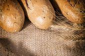 Fresh Bread With Ears Of Rye