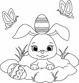 pic of rabbit hole  - Vector illustration of cute Easter bunny peeking out of a hole - JPG