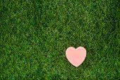 Heart Lying On Green Grass