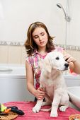 girl grooming of her dog at home