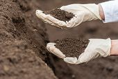 Technician woman hands holding soil