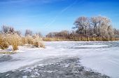 Winter Landscape With Trees And Frozen River