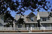 Single Family Residential Development